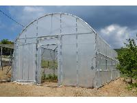 Greenhouses- Cages for birds